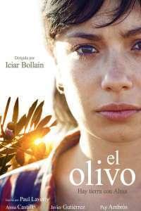 El olivo – Măslinul (2016) – filme online