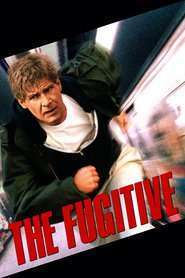 The Fugitive – Evadatul (1993) – filme online