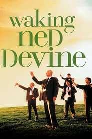 Waking Ned - În sănătatea lui Ned (1998) - filme online