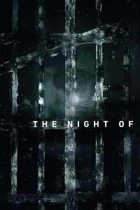 The Night Of - În acea noapte (2016) - Miniserie TV