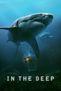 47 Meters Down – In the Deep (2017) – filme online