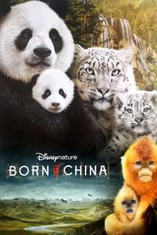 Born in China (2016) – filme online hd