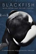 Blackfish - Balena ucigașă (2013) - filme online