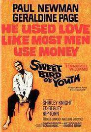 Sweet Bird of Youth - Dulcea pasăre a tinereții (1962) - filme online