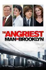 The Angriest Man in Brooklyn (2014) - filme online
