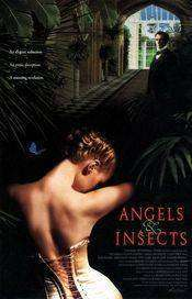 Angels and Insects (1995) - filme online