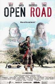 Open Road (2013) - filme online