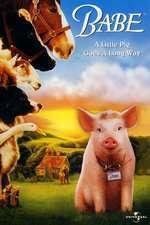Babe - Babe - Cel mai curajos porc din lume (1995) - filme online