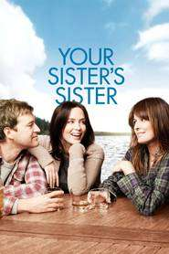 Your Sister's Sister (2011) - filme online