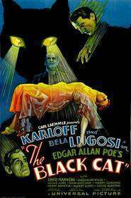 The Black Cat (1934) - filme online