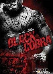 Black Cobra (2012) -  filme online