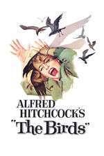 The Birds – Păsările (1963) – filme online