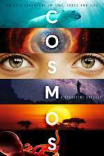 Cosmos: A Space-Time Odyssey (2014) - Serial TV