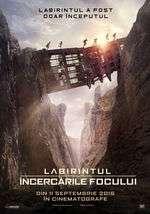 Maze Runner: The Scorch Trials - Labirintul: Încercările focului (2015) - filme online
