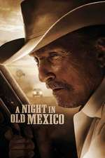 A Night in Old Mexico (2013) - filme online