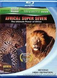Africa's Super Seven - Cei şapte magnifici (2005) - filme online