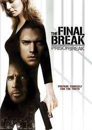 Prison Break (2005) - Sezonul 1 (Ep.1-12) Updated  - filme online gratis
