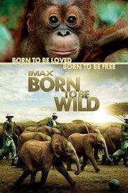 Born to Be Wild (2011) - filme online