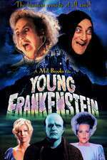 Young Frankenstein - Tânărul Frankenstein (1974) - filme online