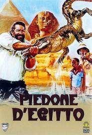 Piedone d'Egitto – Piedone în Egipt (1980) – filme online