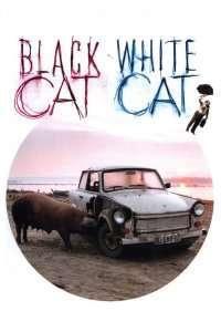 Crna macka, beli macor - Pisica albă, pisica neagră (1998) - filme online