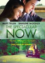 The Spectacular Now (2013) - filme online
