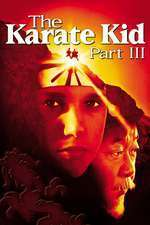 The Karate Kid III (1989) - filme online