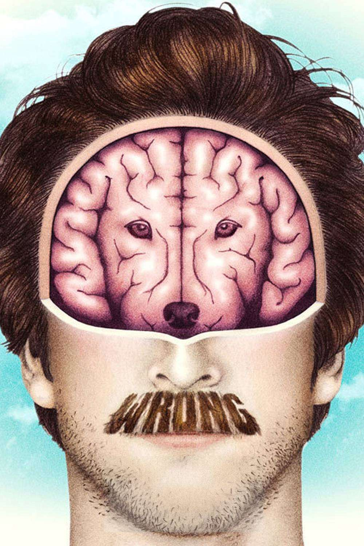 Wrong - Greșit (2012) - filme online