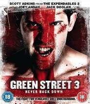 Green Street 3: Never Back Down (2013) - filme online