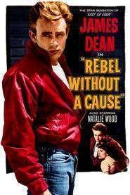 Rebel Without a Cause - Rebel fără cauză (1955) - filme online