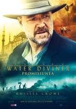 The Water Diviner - Promisiunea (2014)