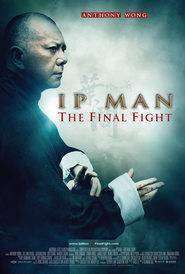 Ip Man: The Final Fight - Ip Man: Bătălia Finală (2013) - filme online