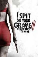 I Spit on Your Grave 3 (2015) - filme online