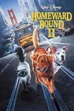 Homeward Bound II: Lost in San Francisco – Călătoria 2: Rătăciţi în San Francisco (1996)