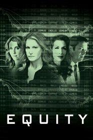 Equity (2016) - Capital propriu