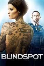 Blindspot (2015) Serial TV - Sezonul 01(ep.01-10)