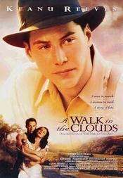 A Walk in the Clouds - Atât de aproape de cer (1995) - filme online