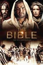 The Bible - Biblia (2013) - Miniserie TV
