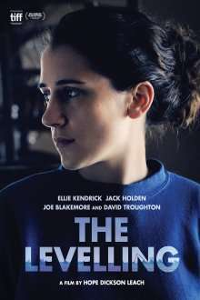 The Levelling (2016) - filme online
