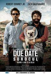 Due Date (2010) - Filme online subtitrate