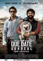 Due Date (2010) - Filme online subtitrate