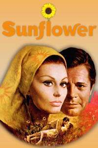 I Girasoli - Floarea-soarelui (1970) - filme online