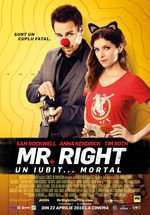 Mr. Right - Mr. Right. Un iubit...mortal (2015) - filme online