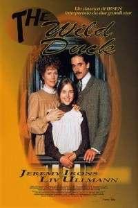 The Wild Duck (1984)  e