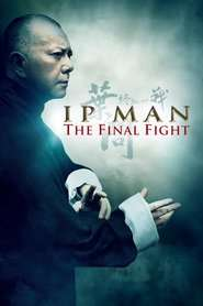 Ip Man: The Final Fight - Ip Man: Bătălia Finală (2013)