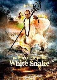 The Sorcerer and the White Snake – Şarpele fermecat (2011)