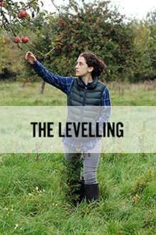 The Levelling (2016) – filme online