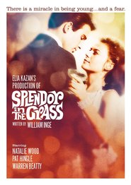 Splendor in the Grass – Splendoare în iarbă (1961) – filme online