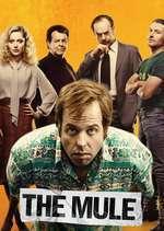 The Mule - Cărăușul (2014) - filme online