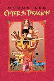 Enter the Dragon (1973) - filme online